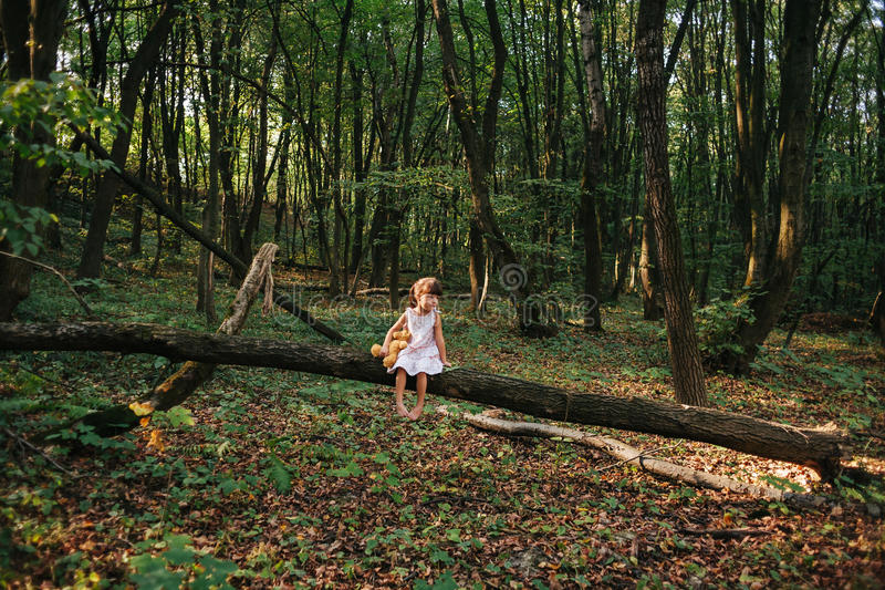 Mała dziewczynka bawić się z jej niedźwiedziem w drewnach dziewczyny obsiadanie dalej fotografia royalty free