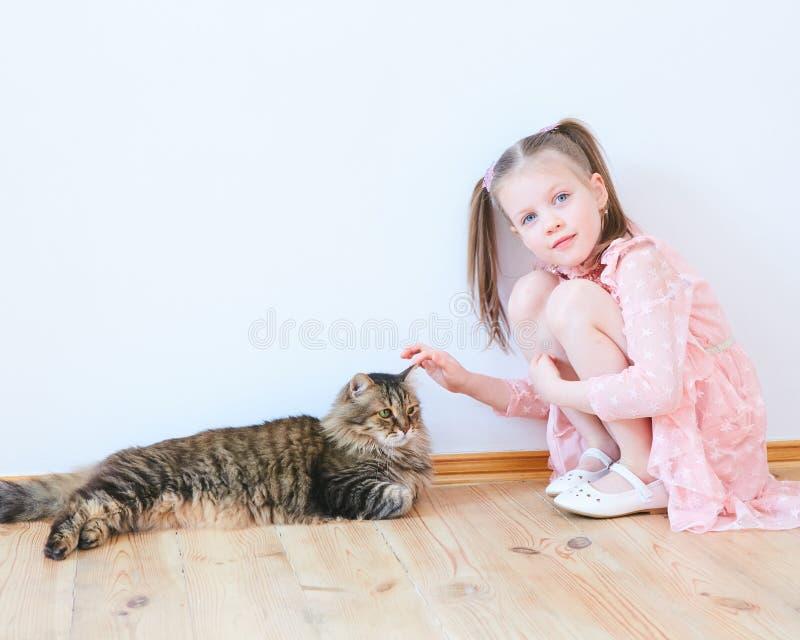 Mała dziewczynka bawić się z kotem w domu zdjęcia royalty free