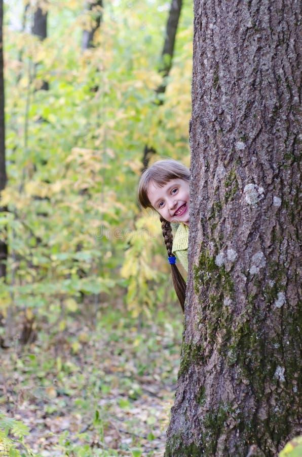 Mała dziewczynka chodzi w jesień parku fotografia stock