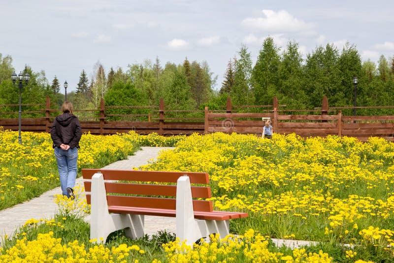 Mała dziewczynka chodzi w parku przerastającym z dandelions z matką zdjęcia stock