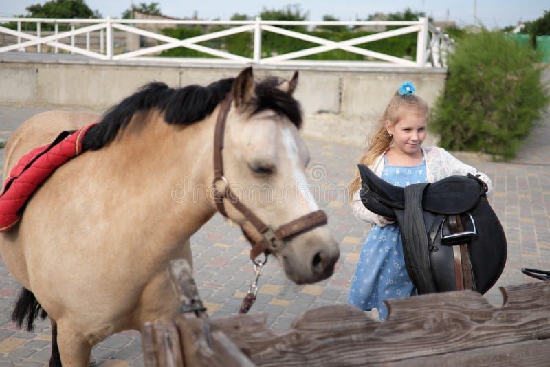 Mała dziewczynka czyści jej konika, czesze i siodła on obrazy royalty free