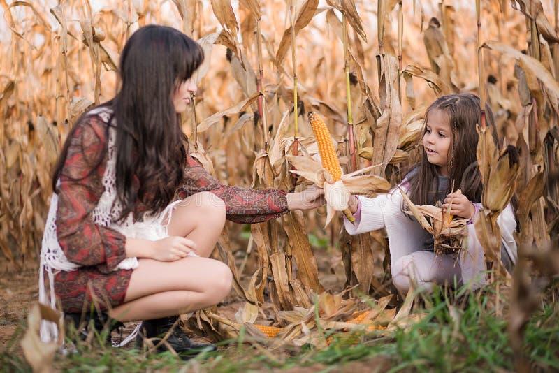Mała dziewczynka i jej mama zbieramy kukurudzy w polu obraz stock