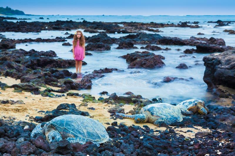 Mała dziewczynka i zieleni denni żółwie zdjęcia royalty free
