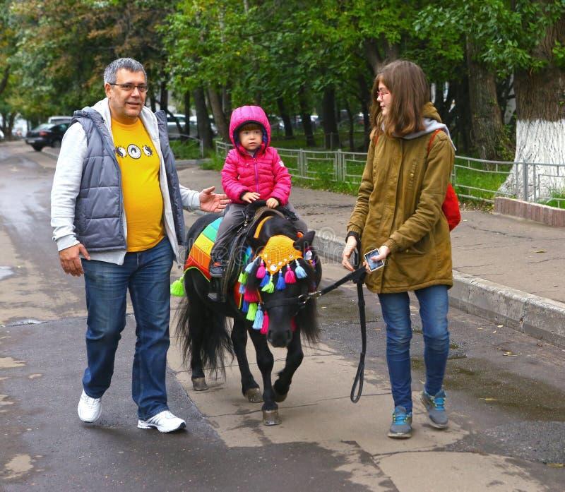 Mała dziewczynka konika jeździecki koń w jesień parka jarmarku fotografia stock