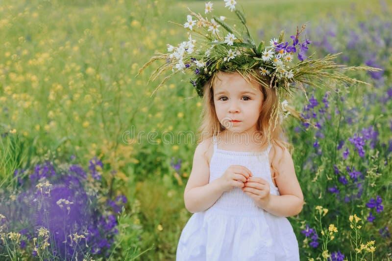Mała dziewczynka kwiatu chamomile wianku pola fiołek zdjęcia royalty free