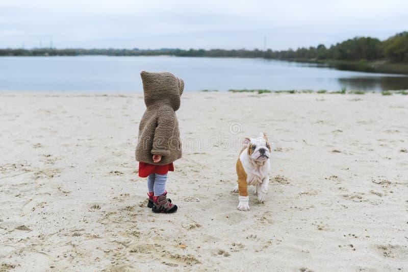 Mała dziewczynka trenuje jej szczeniaka przy plażą w jesieni Dzieci bawią się z jej małym buldogiem obrazy royalty free