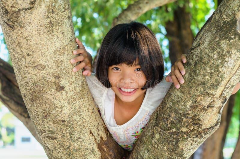 Mała dziewczynka uśmiech szczęśliwy na drzewie zdjęcie royalty free