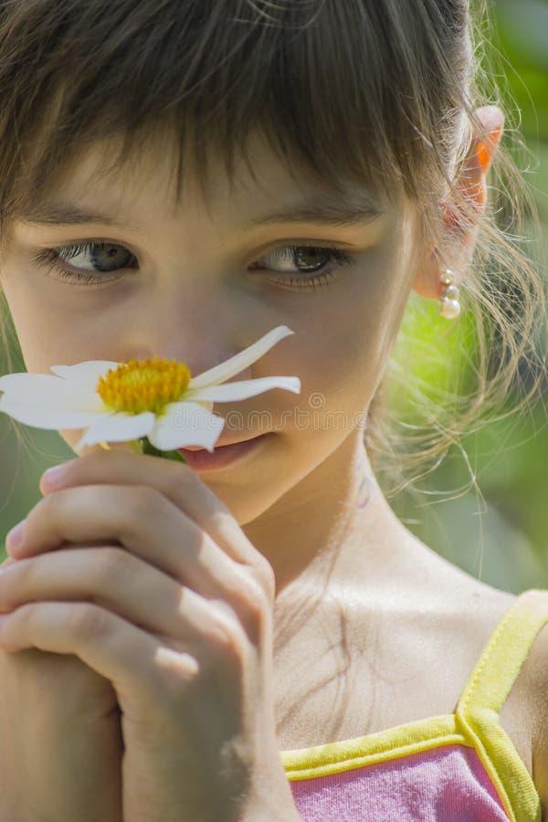 Mała dziewczynka z pięknymi dużymi oczami zdjęcie stock