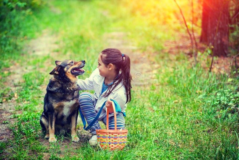 Mała dziewczynka z pyknicznym koszykowym obsiadaniem z psem na trawie w lesie obrazy royalty free