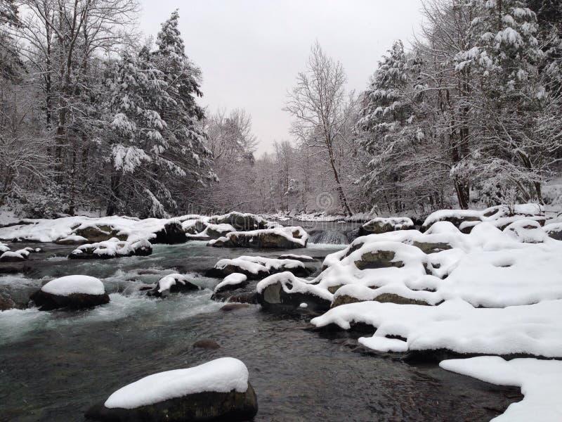 Mała Gołębia rzeka, śnieg fotografia royalty free