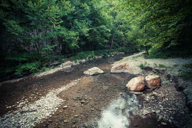 Mała halna rzeka z udziałem kamienie i skały zdjęcie royalty free
