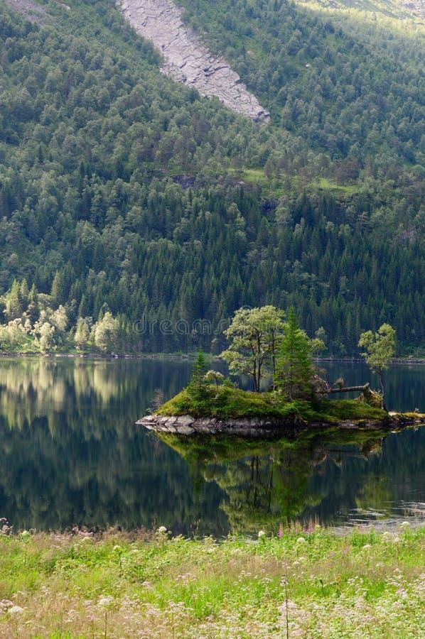 Mała kamienista i sosnowa wyspa z odbiciem fotografia royalty free