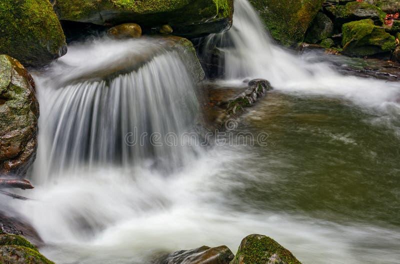 Mała kaskada na rzece wśród bouders w lesie zdjęcia stock