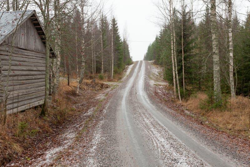 Mała lasowa droga w Finland fotografia stock