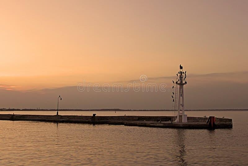 Mała latarnia morska z birdls w wieczór, Odessa, Ukraina zdjęcia royalty free