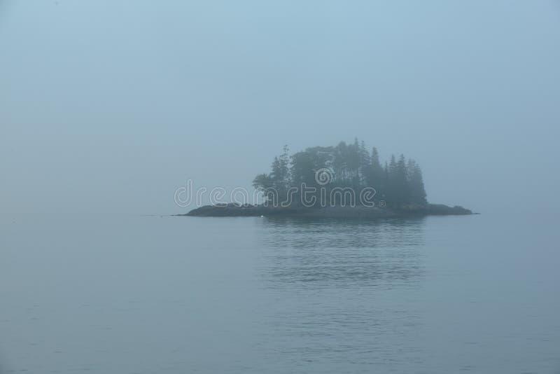 Mała lesista wyspa w mgle obrazy stock