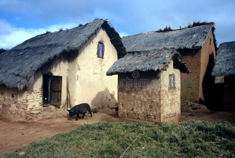 mała Madagascar wioska fotografia royalty free