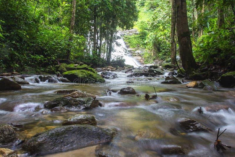Mała piękna strumyka strumienia siklawy kaskada fotografia royalty free