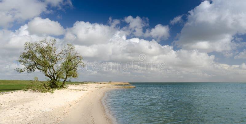Mała plaża wzdłuż wybrzeża IJsselmeer, Friesland, Holandia zdjęcie royalty free