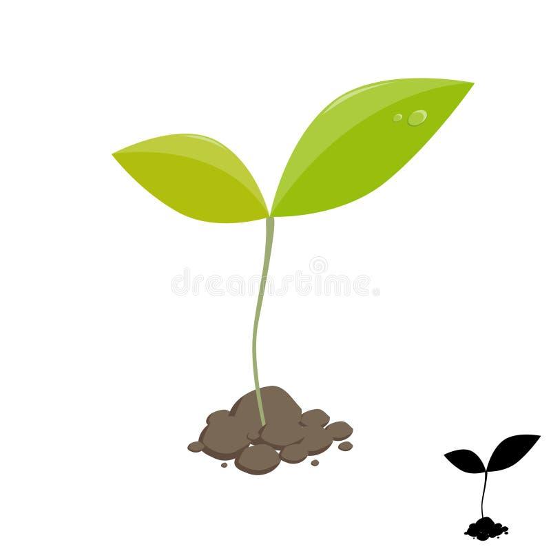 Mała rośliny flanca ilustracja wektor