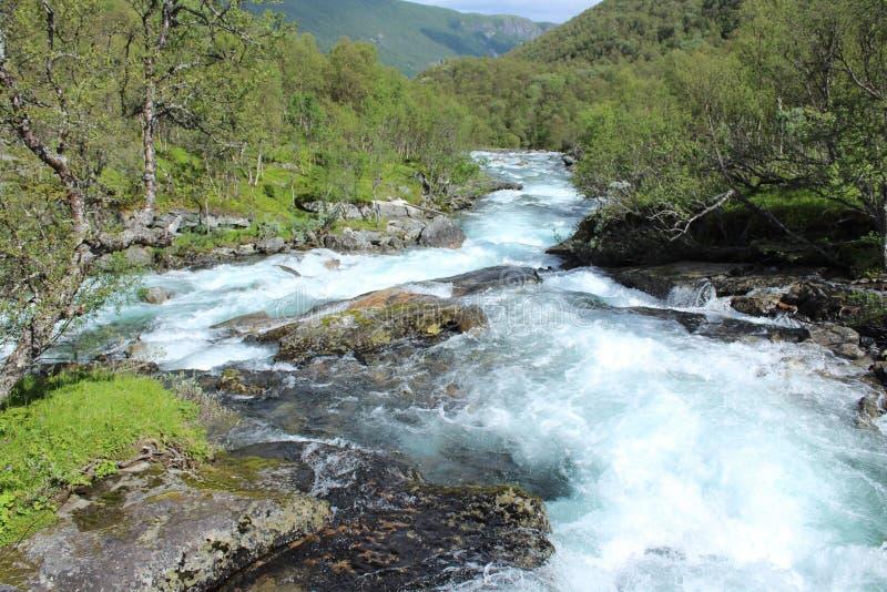 Mała rzeka zdjęcia royalty free