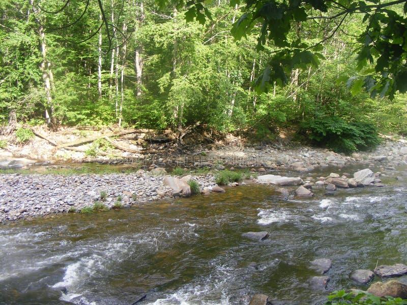 Mała rzeka z skałami zdjęcia stock