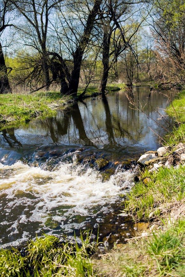 Mała siklawa na lasowej rzece w wiośnie zdjęcie royalty free