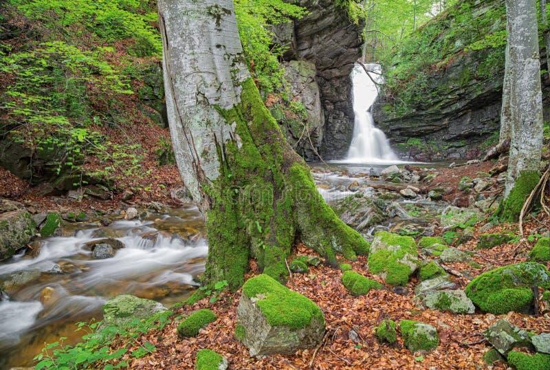 Mała siklawa W Bałkańskich górach zdjęcie stock