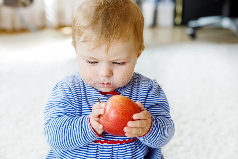Mała urocza dziewczynka je dużego czerwonego jabłka obrazy stock