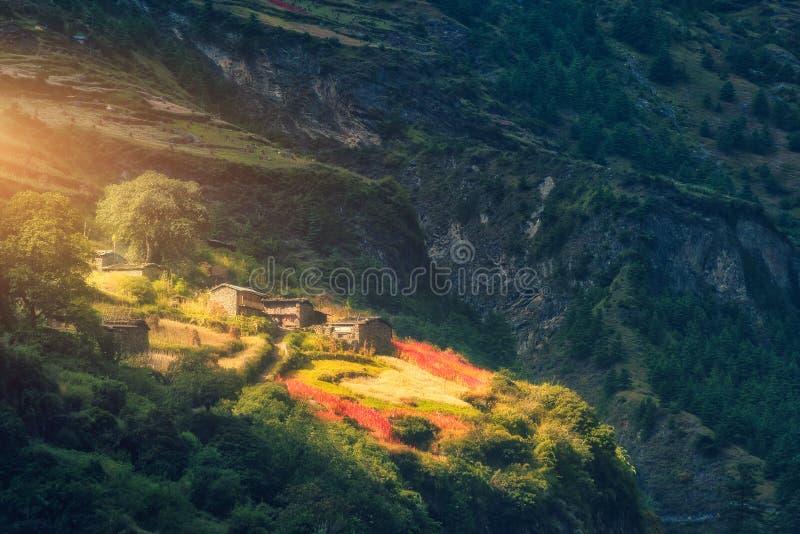 Mała wioska na wzgórzu zaświecał sunbeam przy zmierzchem zdjęcie stock