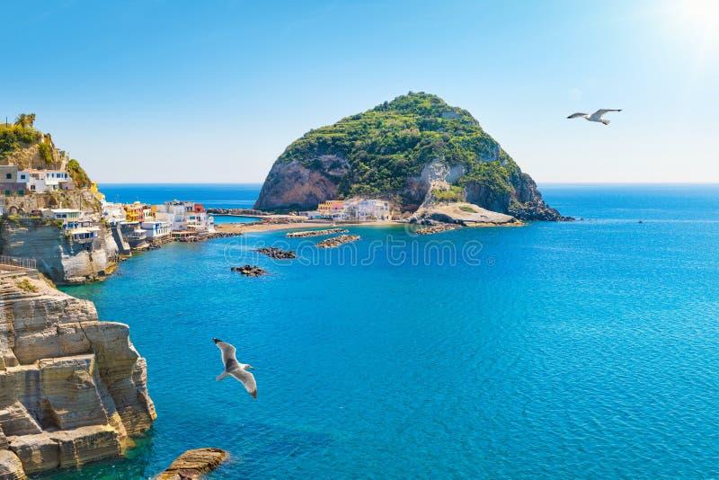 Mała wioska Sant «Angelo na Ischia wyspy, Włochy zdjęcie royalty free