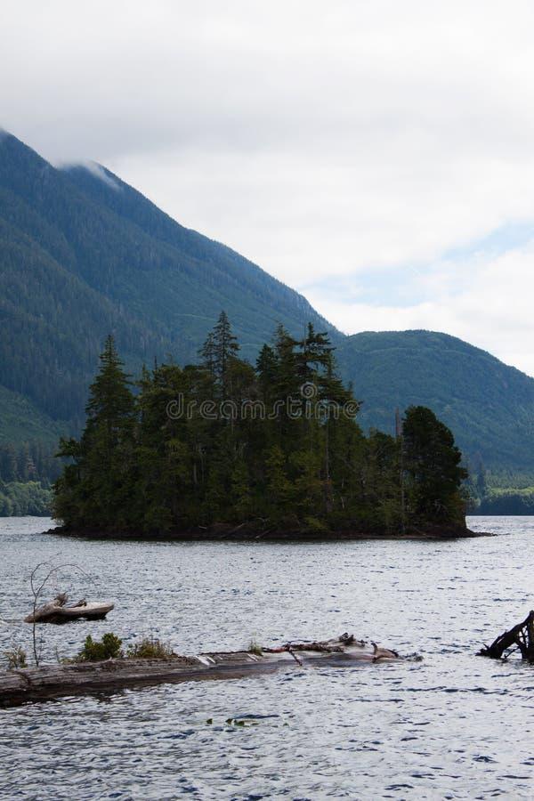Mała wyspa na Wiktoria jeziorze, BC zdjęcia royalty free