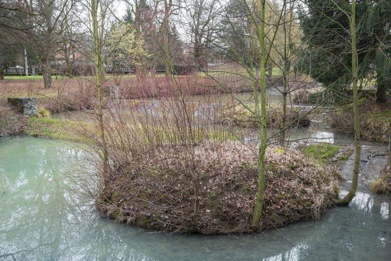 Mała wyspa w oszuscie z młodymi drzewami zdjęcia royalty free