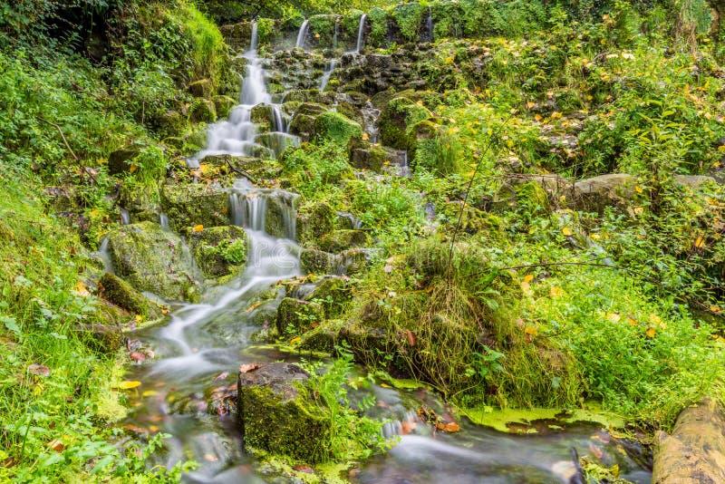 Mała zatoczka wody zieleni mech fotografia stock