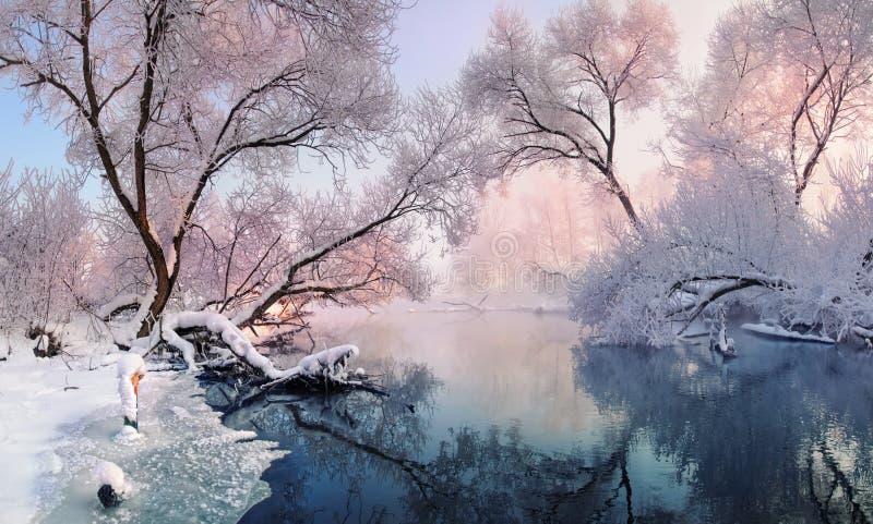 Mała zima rzeczna i frosted drzewa, zaświecający ranku słońcem obrazy stock