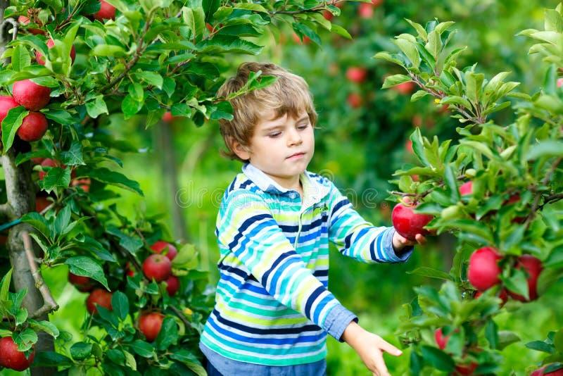 Małe dziecko chłopiec jest ubranym w kałużę na ciepłym pogodnym wiosna dniu, doskakiwanie i Szczęśliwy dziecko wewnątrz zdjęcie royalty free