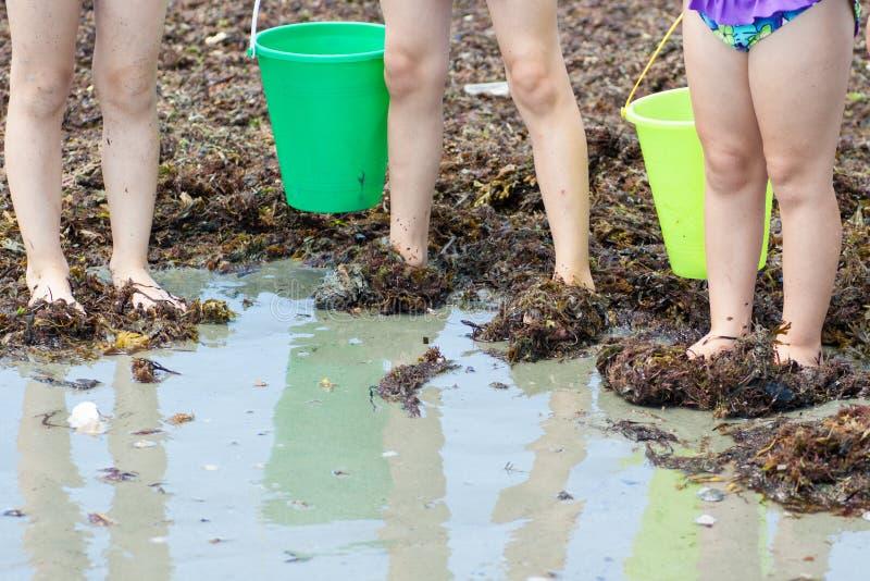 Małe Dziewczynki przy plażą z ciekami w gałęzatce obraz royalty free
