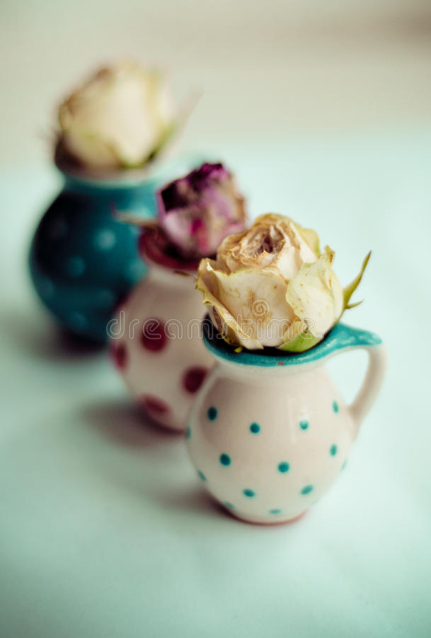 Małe róże obraz stock