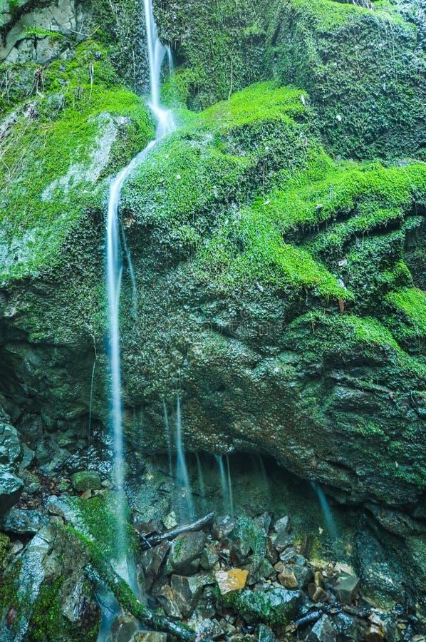 Małe siklawy nad mechatymi skałami fotografia royalty free