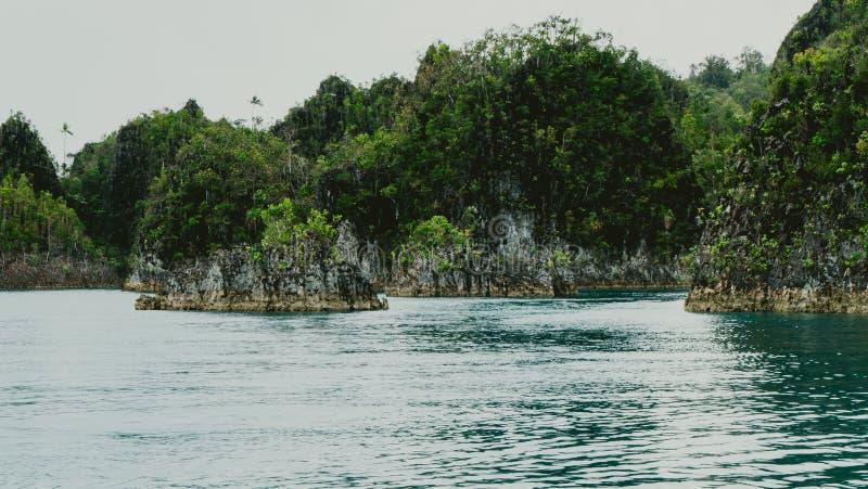 Małe skaliste wyspy w Pianemo, Raja Ampat, Zachodni Papua, Indonezja fotografia stock