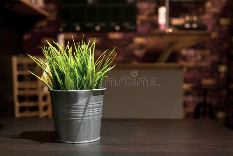 Małe sztuczne zielone rośliny w cynkowym metalu kwiatu wazy decorati obrazy stock