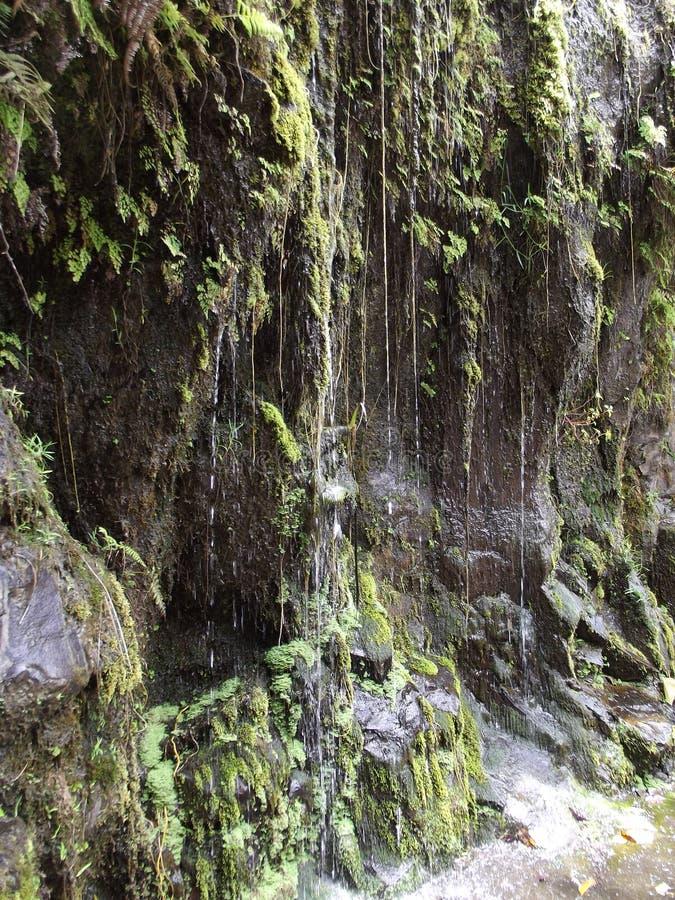 małe wodospadu zdjęcia stock