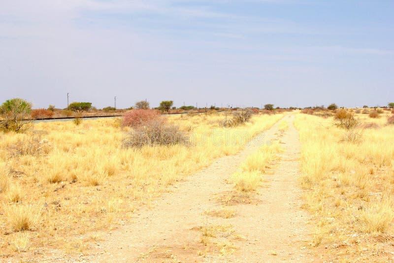 Małego żwiru sawanny drogowy krajobraz, Namibia fotografia royalty free