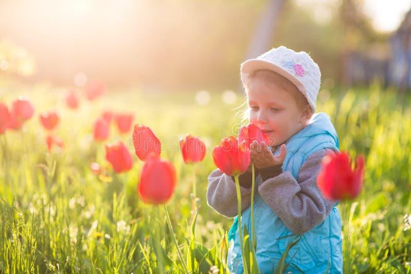 Małej dziewczynki dziecko w polu z zieloną trawą i kwitnącym tulipanem obrazy royalty free