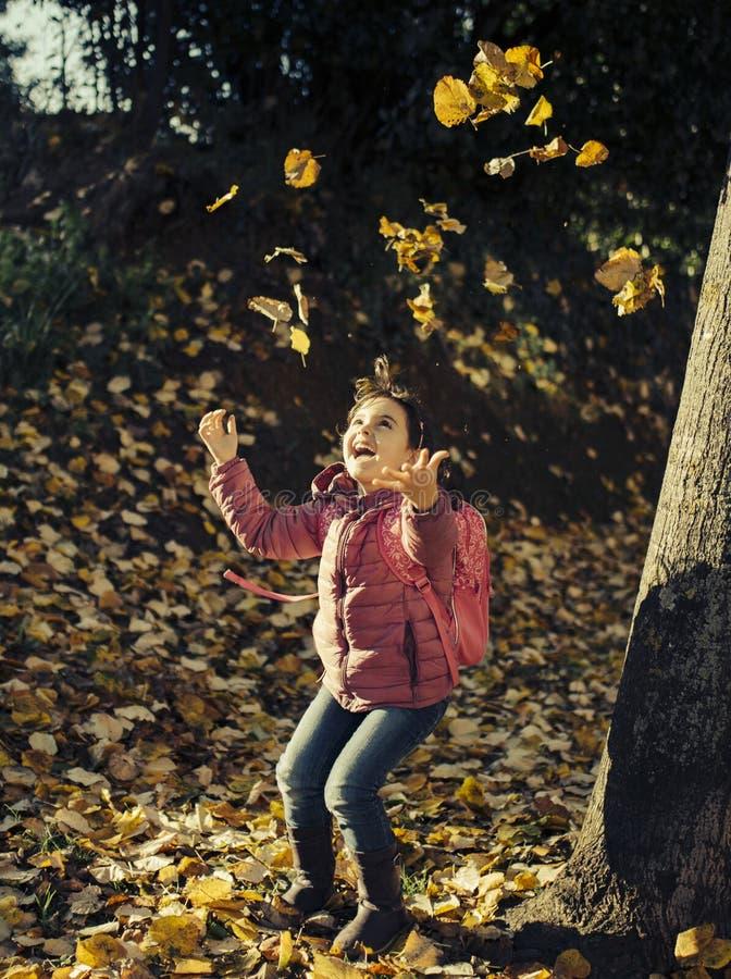 Małej dziewczynki jesieni portret zdjęcia royalty free