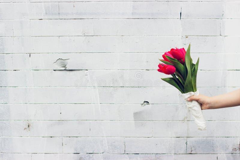 Małej dziewczynki mienia bukiet czerwoni tulipany obrazy stock