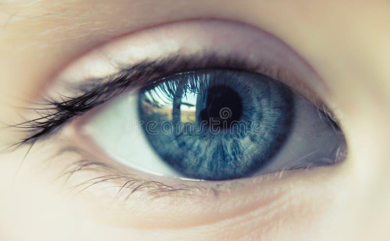 Małej dziewczynki niebieskie oko fotografia stock