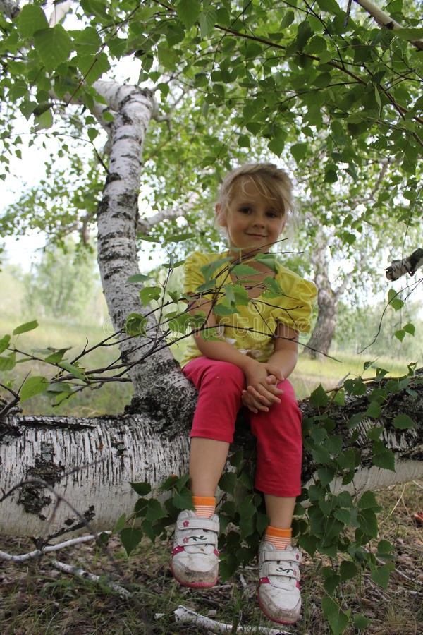 Małej Dziewczynki obsiadanie Na Drzewnym bagażniku 20302 zdjęcie royalty free