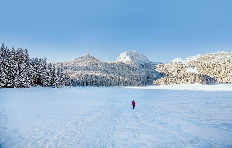 Małej dziewczynki odprowadzenie w śniegu zakrywał Durmitor górę w Montene zdjęcia stock