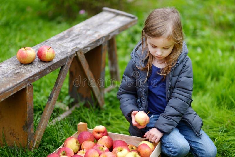 Małej dziewczynki siedzący łasowanie jabłko na jesień dniu fotografia stock